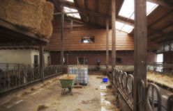 Empty farm barn Stock Photography