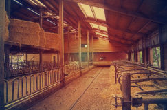 Empty farm barn Royalty Free Stock Photos