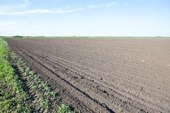 Empty farm field Stock Image