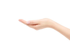 Empty female hand on white background. Stock Photo