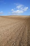 Empty Field. Large field, freshly ploughed and tilled, ready for planting Royalty Free Stock Photos