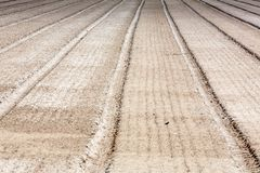 Empty field freshly plowed in straight lines stock image