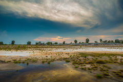Empty Field. Photo of Empty field after the rain Royalty Free Stock Image