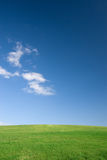 Empty field and sky. Empty green meadow and blue sky with few clouds Stock Image