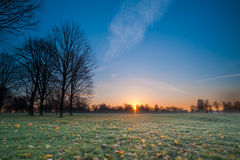 Empty Field During Winter Sunrise Royalty Free Stock Images