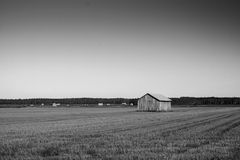 Empty Fields, Full Barns. The harvest time is over and the crop is safely in the barns. Or at least it used to be in the old days stock image