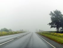 Empty foggy country road. Royalty Free Stock Photo