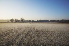 Empty football pitch and frosty winter morning Stock Images