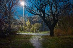 Empty footpath with street lamp royalty free stock images