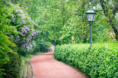 Empty footpath with a street lamp in spring season Royalty Free Stock Photos