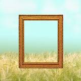 Empty frame against a blurred texture. Surreal empty frame on a blurred rural background stock photo