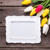 Empty frame, bright yellow, pink  and white tulips flowers  on Royalty Free Stock Photography