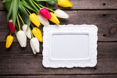 Empty frame, bright yellow, pink  and white tulips flowers  on Stock Photography