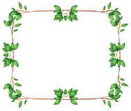 An empty frame with green leafy borders Stock Images