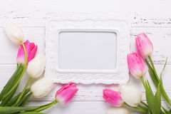 Empty frame and pink and white tulips flowers  on rustic  white Stock Photo