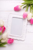 Empty frame and pink and white tulips flowers Stock Photo