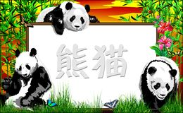 Empty frame surrounded by pandas. (Vector) Royalty Free Stock Images