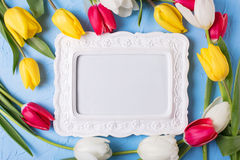 Empty frame for text and red, yellow and white tulips flowers  o. N  blue textured background. Selective focus. Place for text. Flat lay Stock Photo