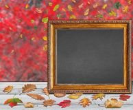 Empty frame for thanksgiving day design quote postcard banner Royalty Free Stock Photography