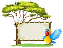 An empty framed banner with a parrot and a a bee Royalty Free Stock Photo