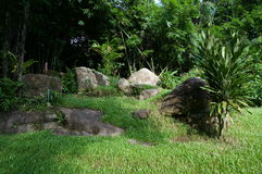 Empty garden in the forest royalty free stock photography