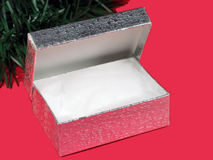 Empty Gift Box. Empty silver gift box with cotton padding on red with Christmas greens Stock Image