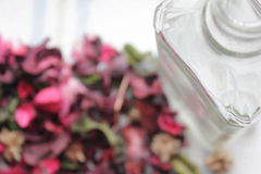 Empty glass bottle and flower petals. Empty glass bottle and pink flower petals Stock Photos
