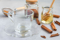 Empty glass cup and ingredients for healthy rooibos red tea Royalty Free Stock Photos