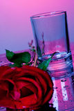 Empty glass with rose Royalty Free Stock Images