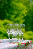 Empty glass on the table. On the natural backgound Stock Image