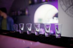 Empty glasses ready for shots on the bar. royalty free stock images