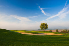 On a empty golf course. Misty morning on a empty golf course Royalty Free Stock Photos
