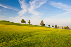 On a empty golf course Stock Photography