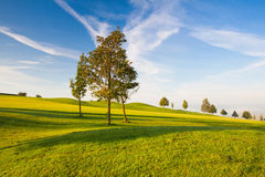On a empty golf course Royalty Free Stock Photos
