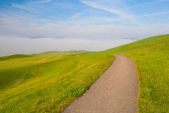 On a empty golf course. Misty morning on a empty golf course Stock Photography