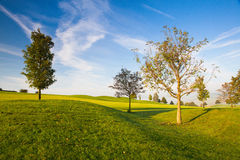 On a empty golf course. Misty morning on a empty golf course Royalty Free Stock Photo