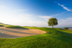 On a empty golf course. Misty morning on a empty golf course Stock Image