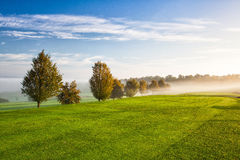 On the empty golf course in the morning Royalty Free Stock Photography
