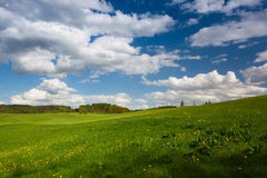 On a empty golf course in spring Royalty Free Stock Photography