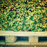 Empty granite bench in a Park - retro filter. Royalty Free Stock Images