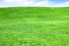 Empty grass field with horizon and sky Stock Image