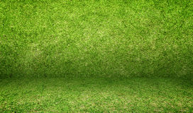 Empty grass room,Mock up template for display of product or addi. Ng text Royalty Free Stock Image