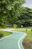 Green bike lane in the park. Empty Green bike lane in the natural park stock photos