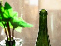 Empty green bottle near windows illuminated by sun royalty free stock photo