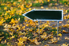 Empty green direction sign on autumn background Stock Photos