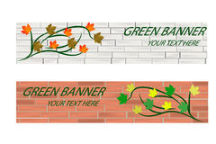 Empty Green ecological banner with brick wall and leaves Stock Images