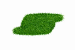Empty green grass blank Stock Photography
