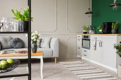 Empty green wall with copy space in elegant kitchen with white furniture,plants and coffee machine in stylish small apartment with. Grey couch royalty free stock photography