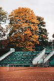 Empty Green and White Concrete Bleachers Near Brown Leaf Tree at Daytime Stock Photography