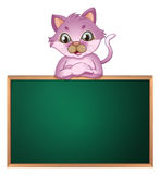 An empty greenboard with a cute cat Royalty Free Stock Images